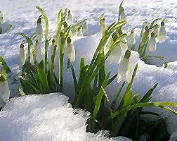 Синоптики кажуть, що потеплішає до нуля і весна прийде за календарем