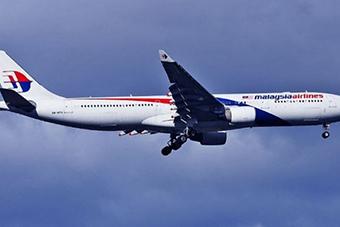 Рік тому на Донеччині було збито пасажирський літак «Malaysia Airlines» (відео)