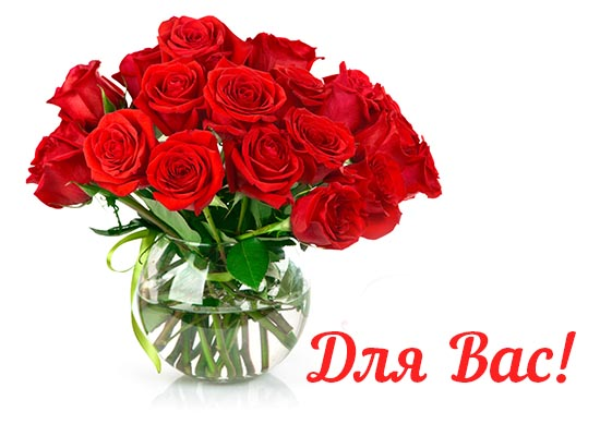 Вітання для Серби Ольги Василівни