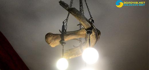 Мисливські трофеї в експозиції Золочівського замку