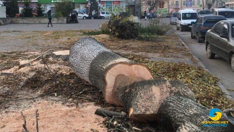 На площі Вічевій зрізали частину дерев