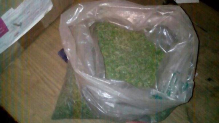 На Золочівщині у дебошира поліцейські виявили рослини, схожі на канабіс