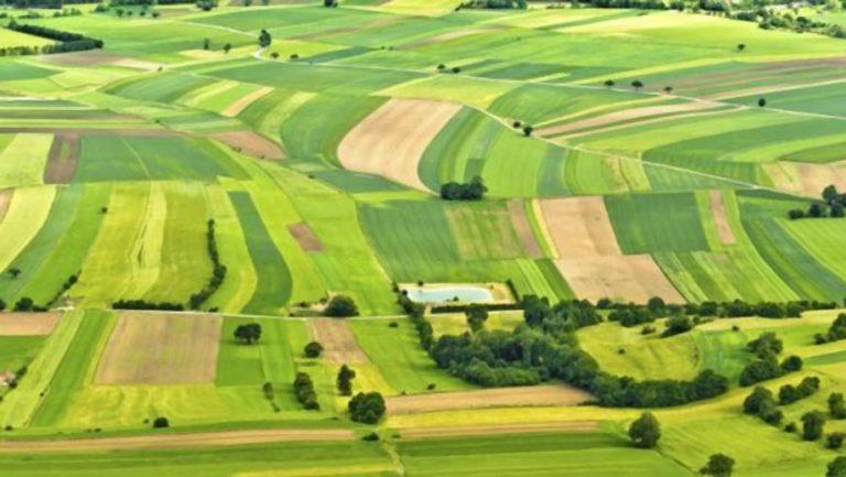 З 1 березня до 30 квітня п.р. власники землі та землекористувачі звільнені від плати за землю
