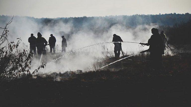 На Бродівщині рятувальники ліквідували пожежу торфу