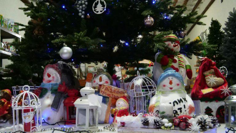 """""""Садовий центр"""" запрошує всіх придбати новорічні товари"""