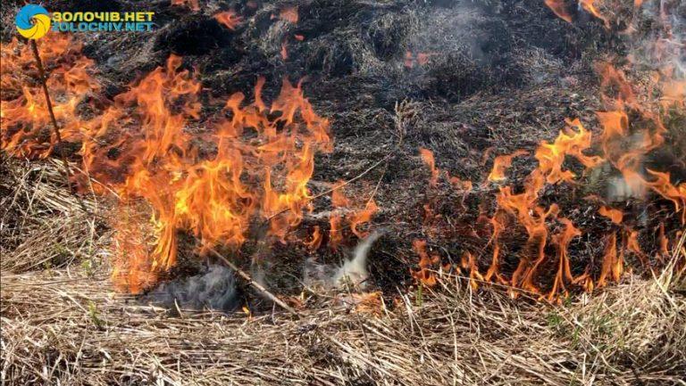 На Золочівщині складено  4 протоколи за спалювання сухостою