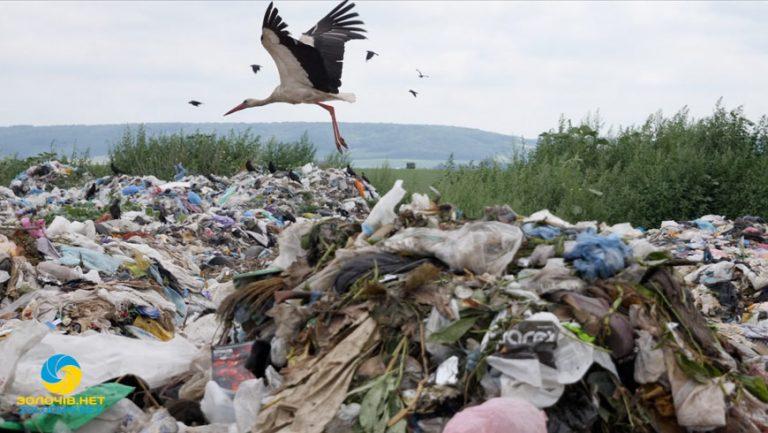 Як насправді на Золочівському сміттєзвалищі виглядає «відсортоване» сміття (відео)