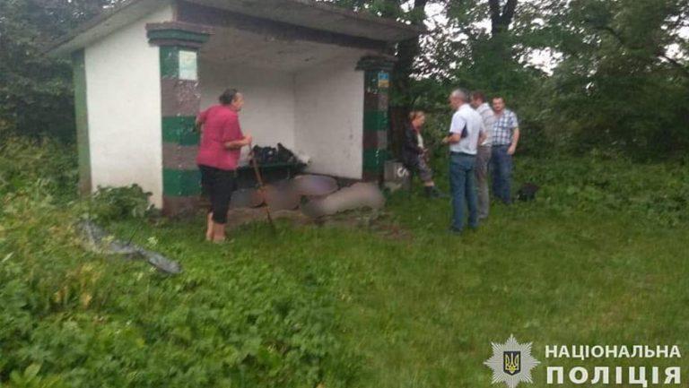 Блискавка влучила у зупинку та вбила трьох жителів Львівщини