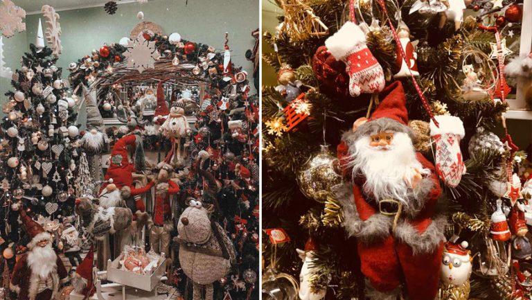 """Агенція """"Sharel"""" запрошує відчути казковий та різдвяний настрій"""