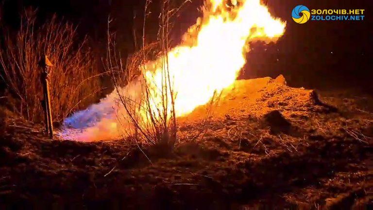 Через підпал сухої трави та дерев у Львові загорівся газопровід (відео)
