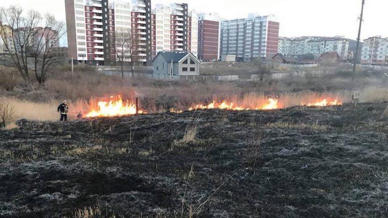 Протягом доби рятувальники ліквідували 60 пожеж сухостою