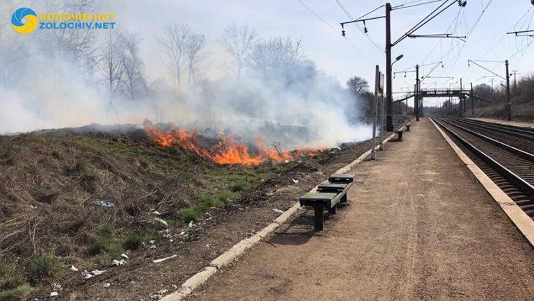 Пожежа сухої трави біля колії у Золочівському районі (відео)