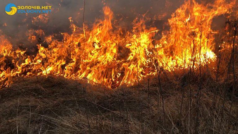 За вихідні паліям полів на Львівщині виписали 46 штрафів