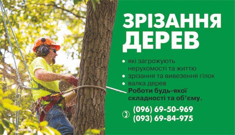 Послуги спилювання дерев