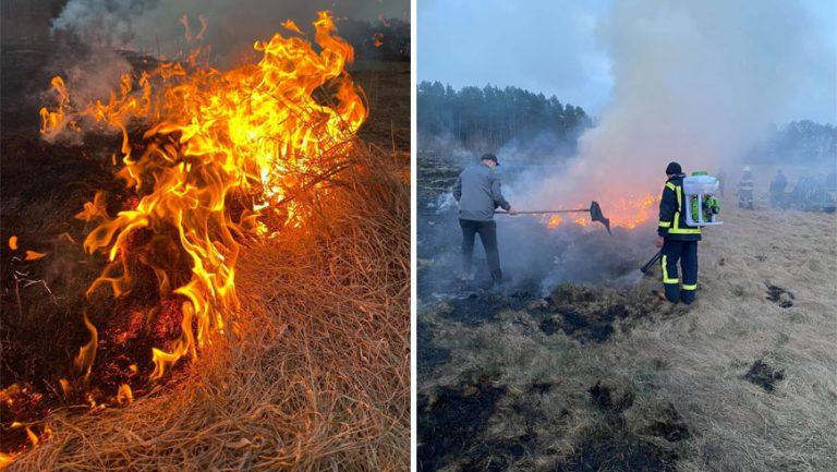 За минулу добу на Львівщині ліквідували 87 пожеж сухої трави