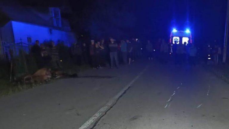Внаслідок наїзду на коня на Львівщині загинув мотоцикліст
