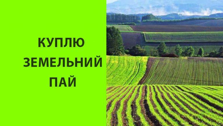 Куплю земельний пай