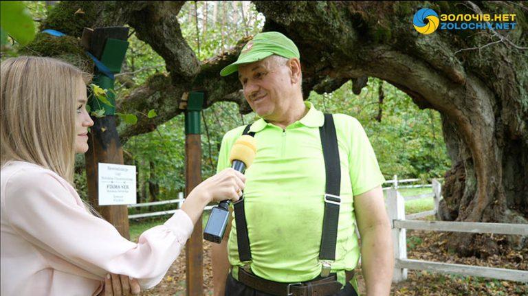 Інтерв'ю: Роман Гурський – поляк, що лікує найстарішу липу України, яка росте на Золочівщині (відео)
