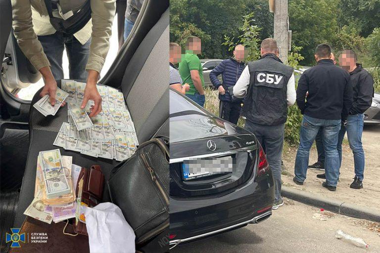 СБУ викрила підприємців, які щомісяця вивозили з України до 30 фур деревини за фальсифікованими документами