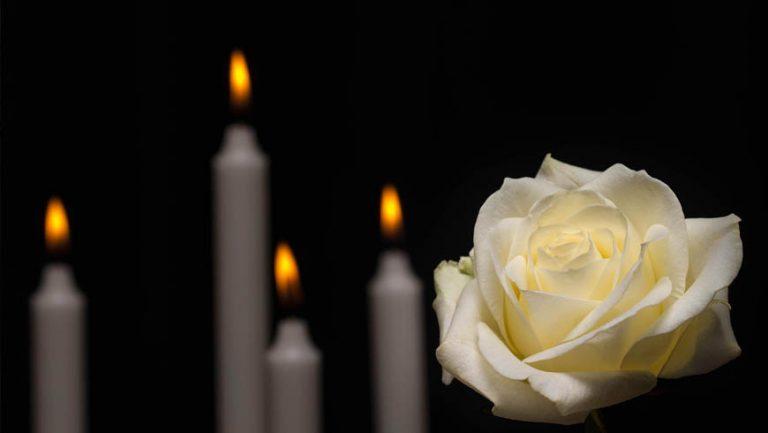 Світлої пам'яті Вікторії Павлів